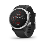 Garmin Fenix® 6S (42 MM)